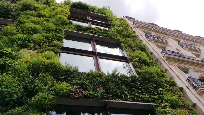 Diversos ejemplos de arquitectura ecológica